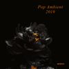 Pop Ambient 2019 (DJ Mix) - Various Artists