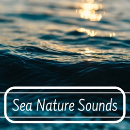 Sea Nature Sounds - Gentle & Soothing Natural Sounds of Crashing Waves and  Flowing Waters by Nature Caldwell