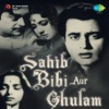 Sahib Bibi Aur Ghulam (Original Motion Picture Soundtrack)