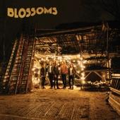 Blossoms - Charlemagne