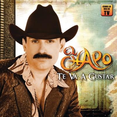 Te Va a Gustar - El Chapo De Sinaloa
