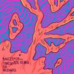 Spaceface & Wizaard - Timeshare (Wizaard Remix)