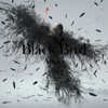 Black Bird / Tiny Dancers / Omoideha Kireide - EP - Aimer