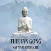 Sat Nam Rinpoche - Koshi Bell Meditation artwork