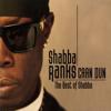 Shabba Ranks - Dem Bow artwork
