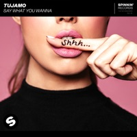 Say What You Wanna (Mizmo rmx) - TUJAMO