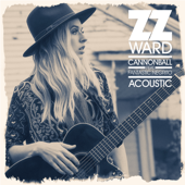 [Download] Cannonball (feat. Fantastic Negrito) [Acoustic] MP3