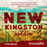 New Kingston Riddim - Various Artists - Various Artists