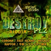 DESTROY RIDDIM Pt.2