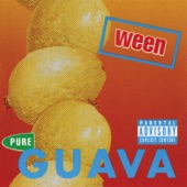 Ween - Don't Get 2 Close (2 My Fantasy)