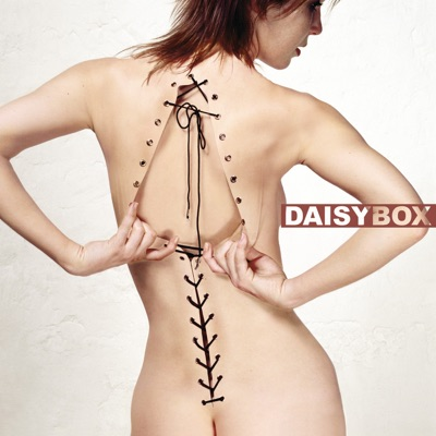Diagnostic - Daisybox