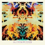 All Them Witches - Bulls