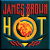 James Brown - Hot (I Need To Be Loved, Loved, Loved, Loved) bild
