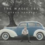 Steve Forbert - Carolina Blue Sky Blues