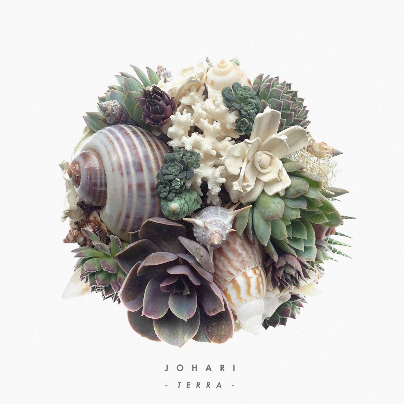 Johari - Terra (2017)