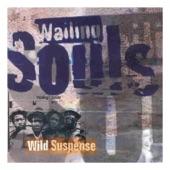 Wailing Souls - Something Funny