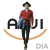 Anji - Dia artwork