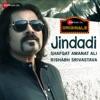 Jindadi Single