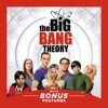 The Big Bang Theory, Season 9 wiki, synopsis