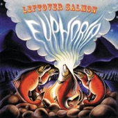 Leftover Salmon - Funky Mountain Fogdown