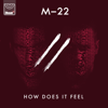 M-22 - How Does It Feel artwork
