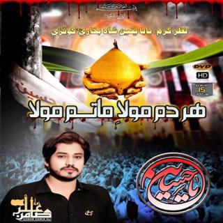 Zamin Ali Qaseeda Mashup 2018 - Single by Zamin Ali on Apple