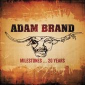 Milestones…20 Years