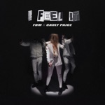 Fly By Midnight & Carly Paige - I Feel It