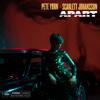 Pete Yorn & Scarlett Johansson