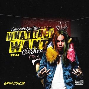 What They Want (feat. 6ix9ine) - Single Mp3 Download