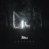 Calling (Alex Skrindo Remix)
