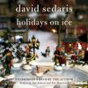David Sedaris - Holidays on Ice  artwork