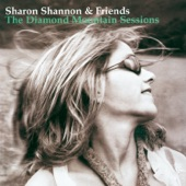 Sharon Shannon - The Four Jimmys (The Fitz Theme)