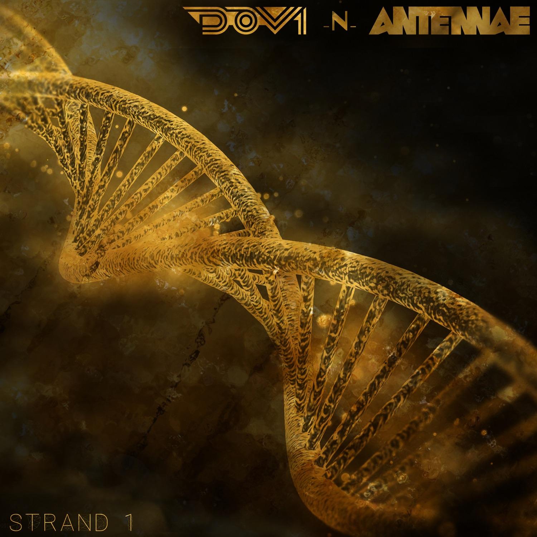 Strand 1 - Single
