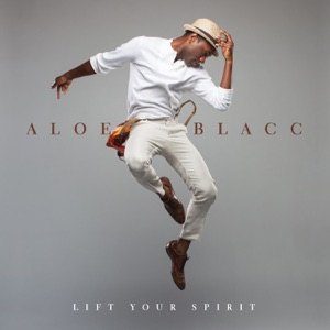 Aloe Blacc - The Hand Is Quicker