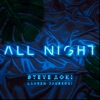 Steve Aoki & Lauren Jauregui - All Night Song Lyrics