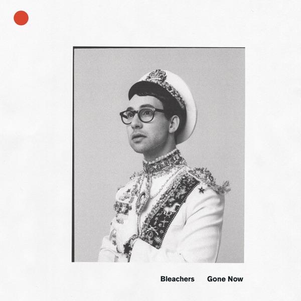 Bleachers - Dont Take The Money
