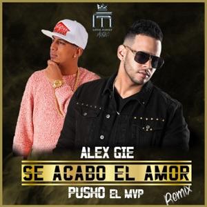 Se Acabo el Amor (Remix) [feat. Pusho] - Single Mp3 Download