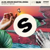 Never Let Me Go - Alok, Bruno Martini & Zeeba Cover Art