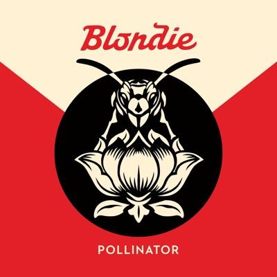 Blondie– Pollinator