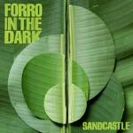 Forro In the Dark - Skazinho