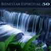 Bienestar Espiritual - Hilo Musical para Relajarse y Practicas Tecnicas de Meditación y Yoga en Armonía con la Naturaleza - Armonìa Luz