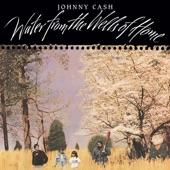 Johnny Cash - Call Me the Breeze (feat. John Carter Cash)