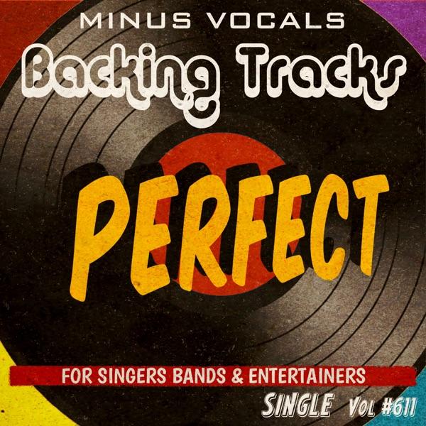 Perfect (Instrumental Karaoke Backing Track) - Single