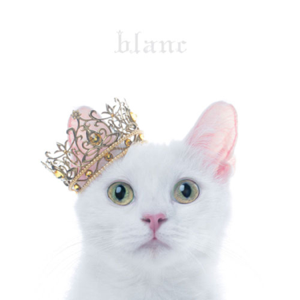 Aimer - Best Selection Blanc