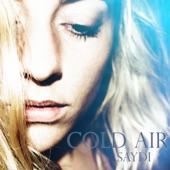 Saydi - Cold Air