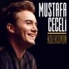 Mustafa Ceceli Koleksiyon