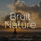 Bruit Nature: Comment Dormir Rapidement
