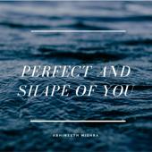 Perfect (Instrumental) - Abhineeth Mishra