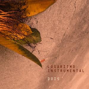 Logaritmo Instrumental - Dois